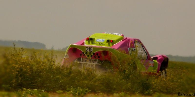 buggy - recherche photos et videos du numero 215 petit buggy rose P1330330