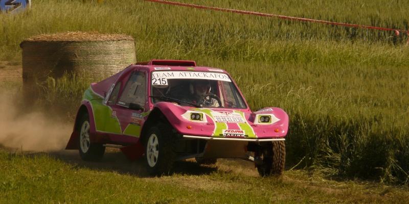 buggy - recherche photos et videos du numero 215 petit buggy rose P1330331