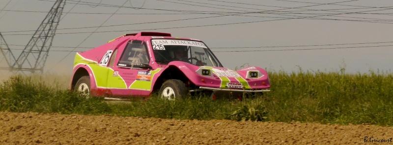 buggy - recherche photos et videos du numero 215 petit buggy rose P1330531