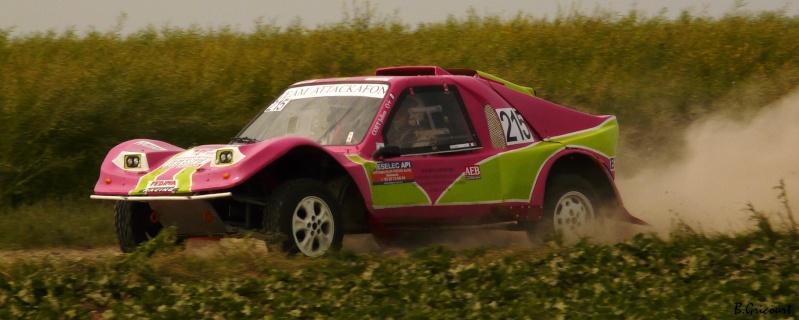 buggy - recherche photos et videos du numero 215 petit buggy rose P1330532