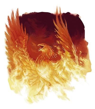 Nouveau logo  pour le Wilckers AFC - 04/09/14 (letisseur) Phenix10