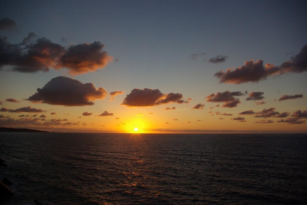 """""""Il est la le soleil""""..... Imgp8811"""