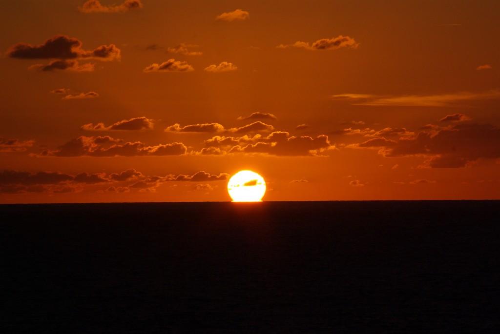 """""""Il est la le soleil""""..... Imgp8814"""
