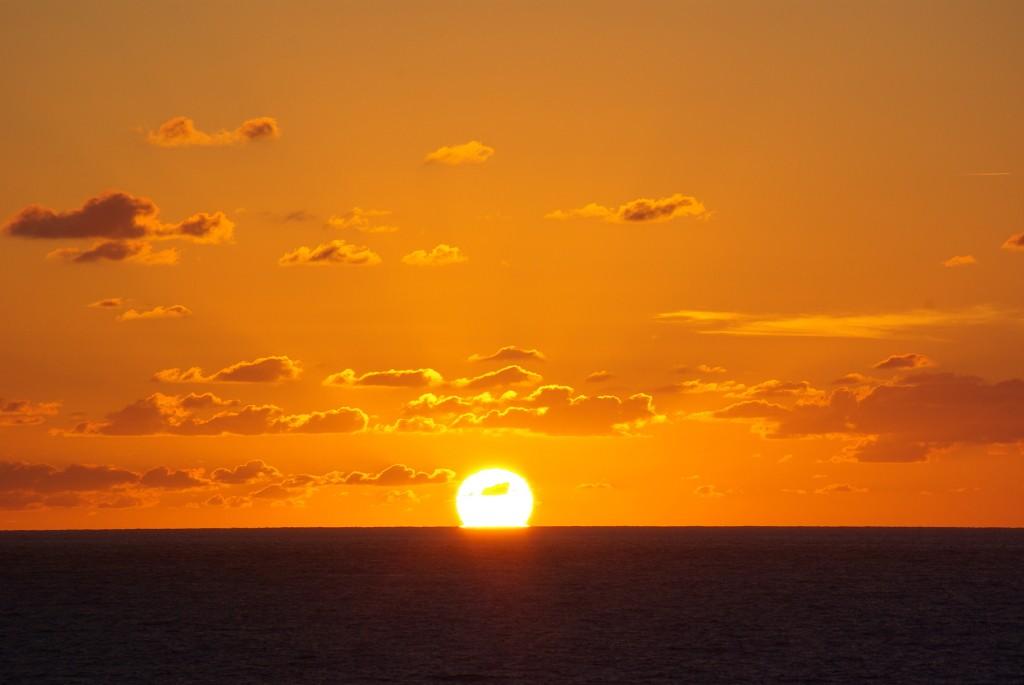 """""""Il est la le soleil""""..... Imgp8815"""