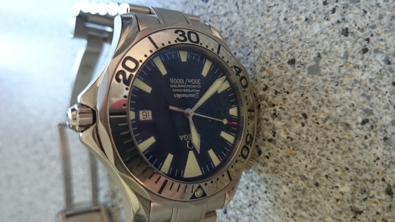 joint Omega Seamaster Dsc_0018