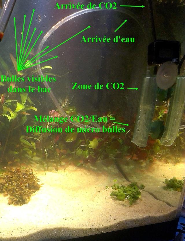 Taifun CO2 JBL Cloche10