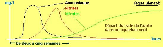 Cycle de l'azote No2210