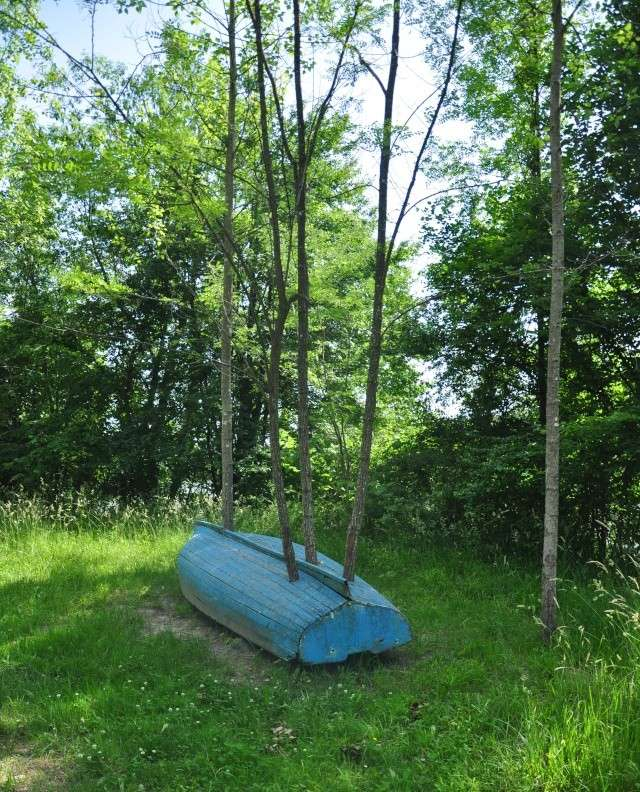 des barques et des arbres! ds l'isere Dsc_0229