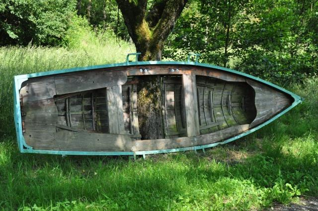 des barques et des arbres! ds l'isere Dsc_0230