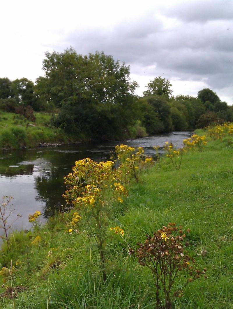 Irlande 2011 Imag0017