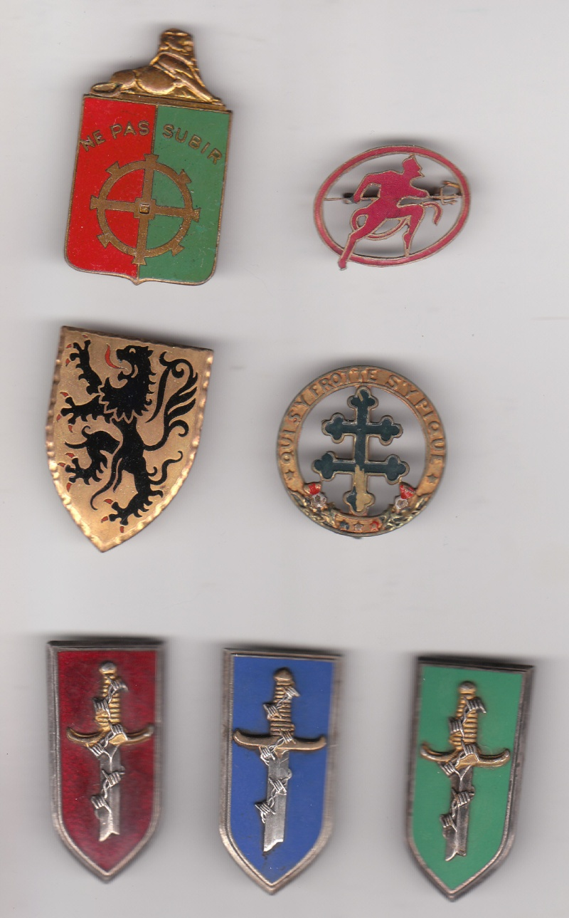 enfin l insigne de mon regiment 110 RI Insign18