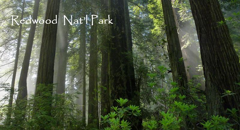 [USA] – Côte Ouest, de la Californie à l'état de Washington P13_re10