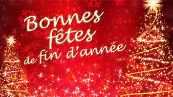 Bonnes fêtes Bonnes10