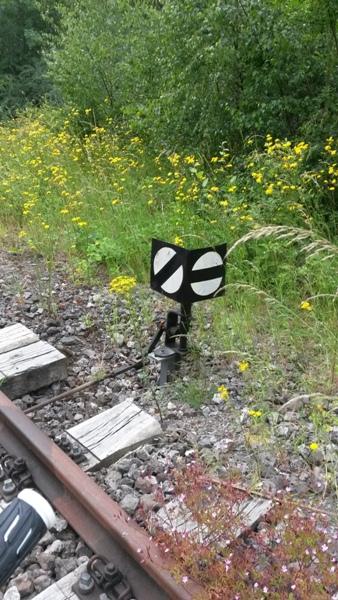 Zone désertée entre la gare de Wiltz et le RAVeL allant à Bastogne 20140611