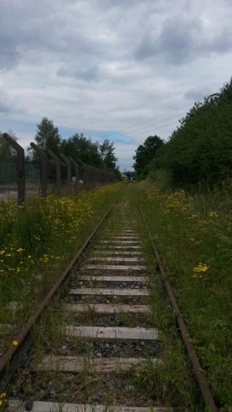 Zone désertée entre la gare de Wiltz et le RAVeL allant à Bastogne 20140612