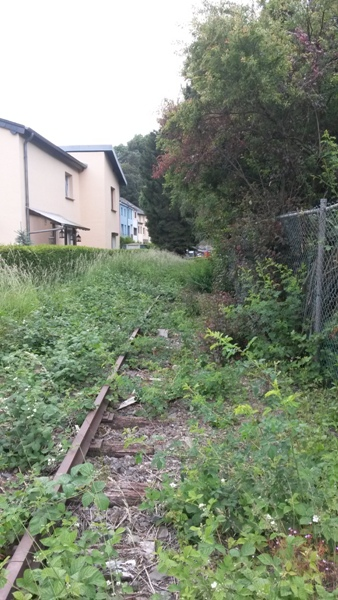 Zone désertée entre la gare de Wiltz et le RAVeL allant à Bastogne 20140616