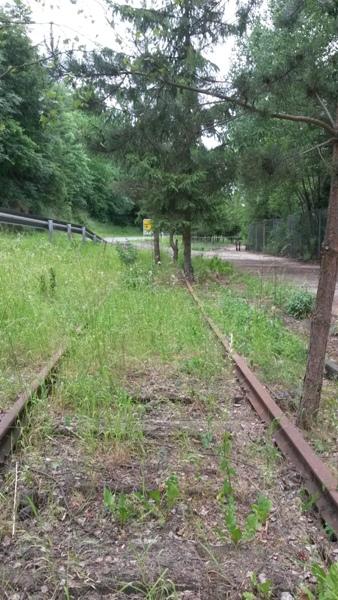 Zone désertée entre la gare de Wiltz et le RAVeL allant à Bastogne 20140618