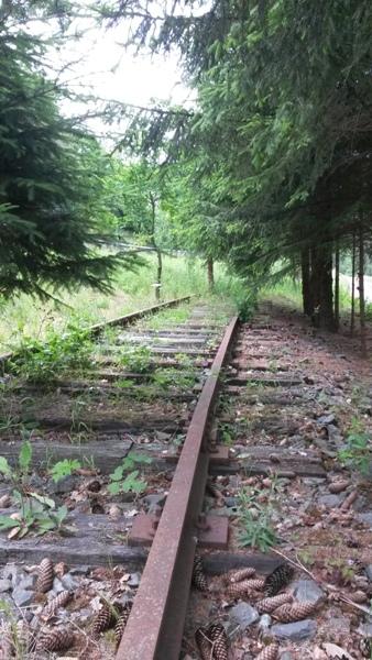 Zone désertée entre la gare de Wiltz et le RAVeL allant à Bastogne 20140619