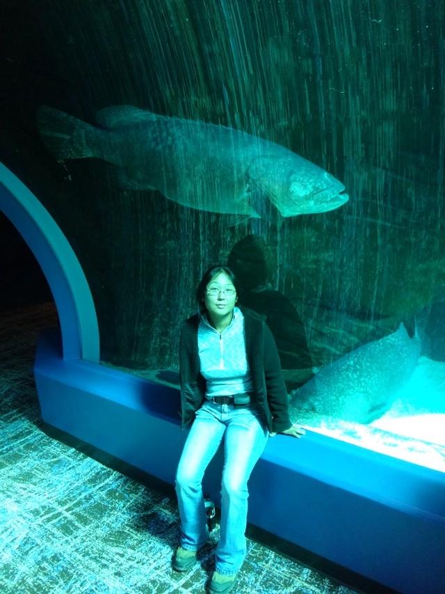 L'aquarium d'Atlanta (usa, floride) 24111312