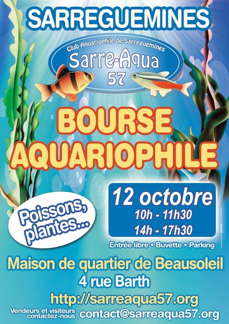Bourse à Sarreguemines -  Dimanche 12 Octobre 2014 Affich10
