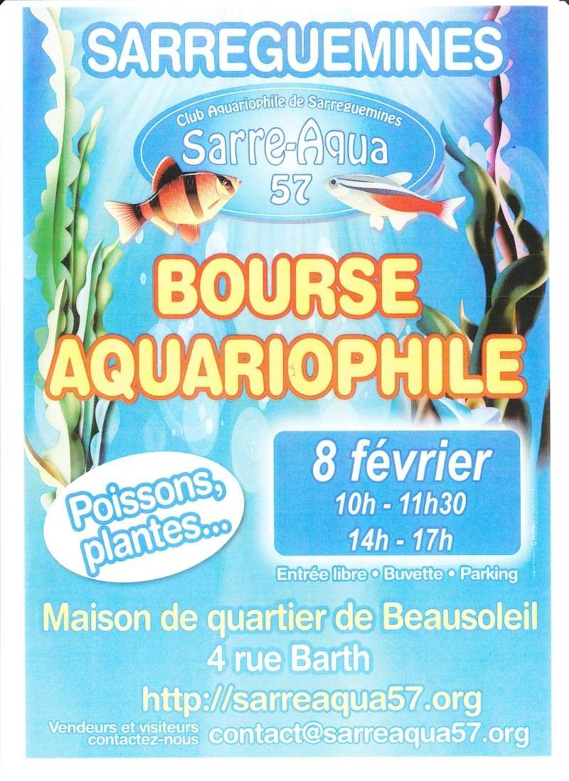Bourse - Sarreguemines - 08 février 2015 Bourse10