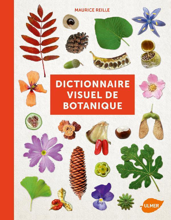 Vocabulaire botanique illustré Reille10