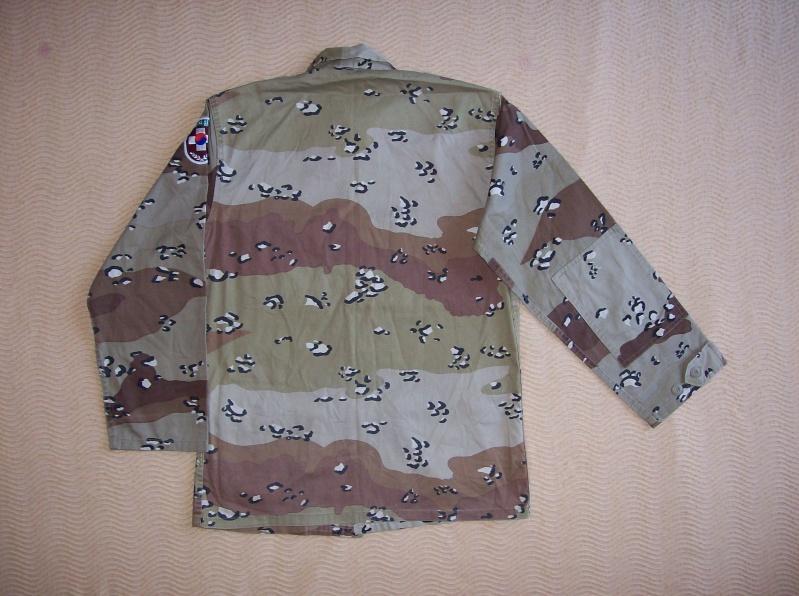 6 colour desert camouflage jacket 100_5219