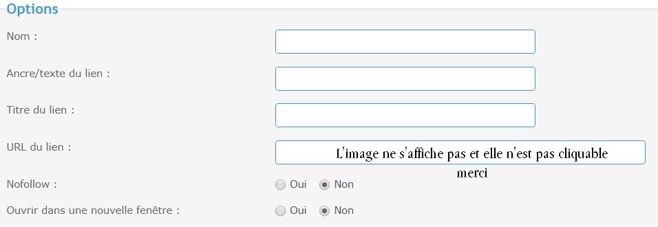 *RESOLU* Modifier le pied de page de mon forum Lien10