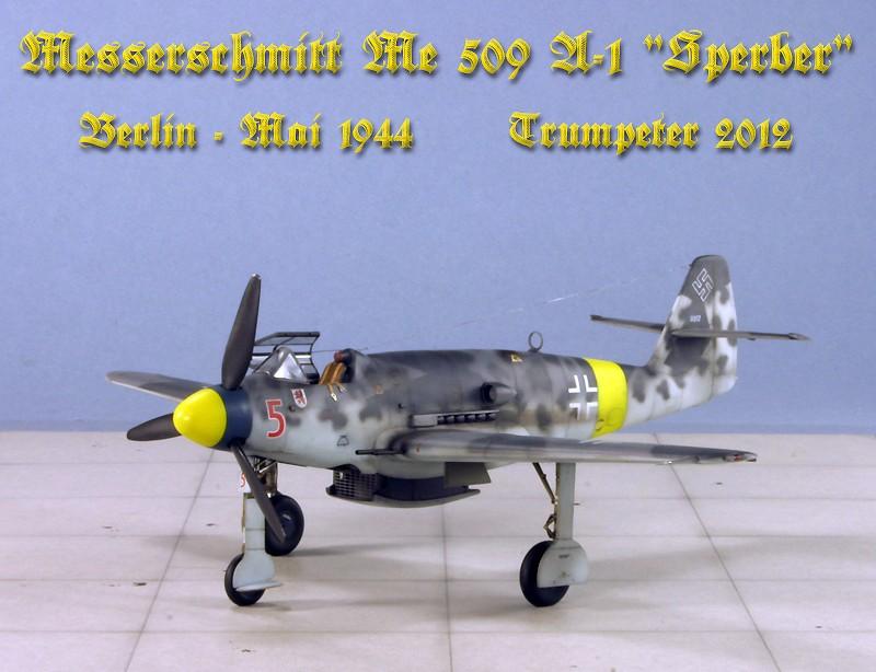 """Messerschmitt Me 509 A-1 """"Sperber"""" (1:48 - TRUMPETER) Img_6739"""