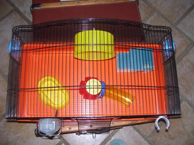 Cage pour souris (69,81,31 + poste) 100_3839
