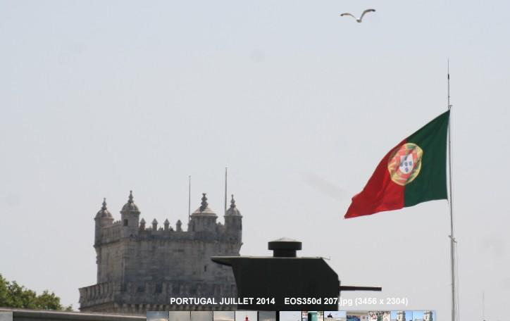 Dans les musées portugais ... 2014-026