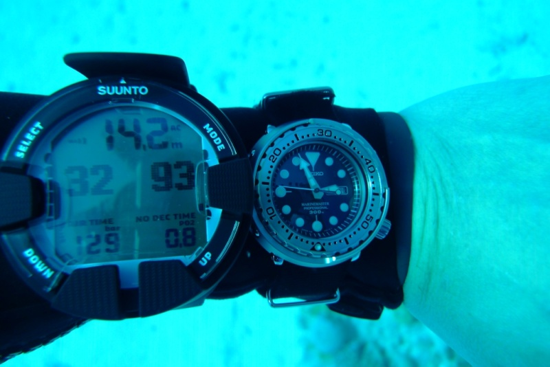 la plongeuse ultime.... (Automatique) P1030212