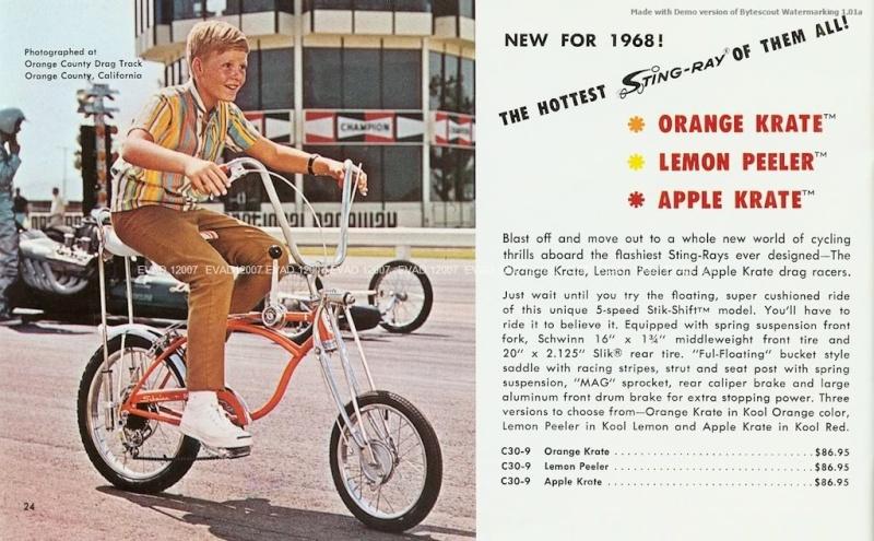 Vélo et Bicycle  811