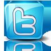 موقع جنرالات العرب تويتر