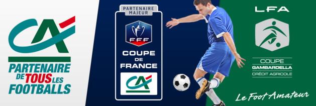 Coupe de France 2014-2015 69539010
