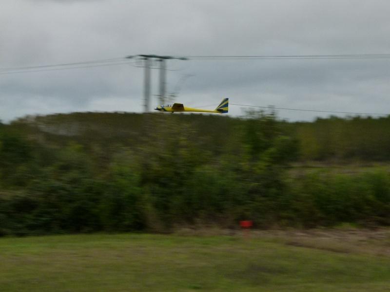 Vol au milieu des oiseaux P1070011