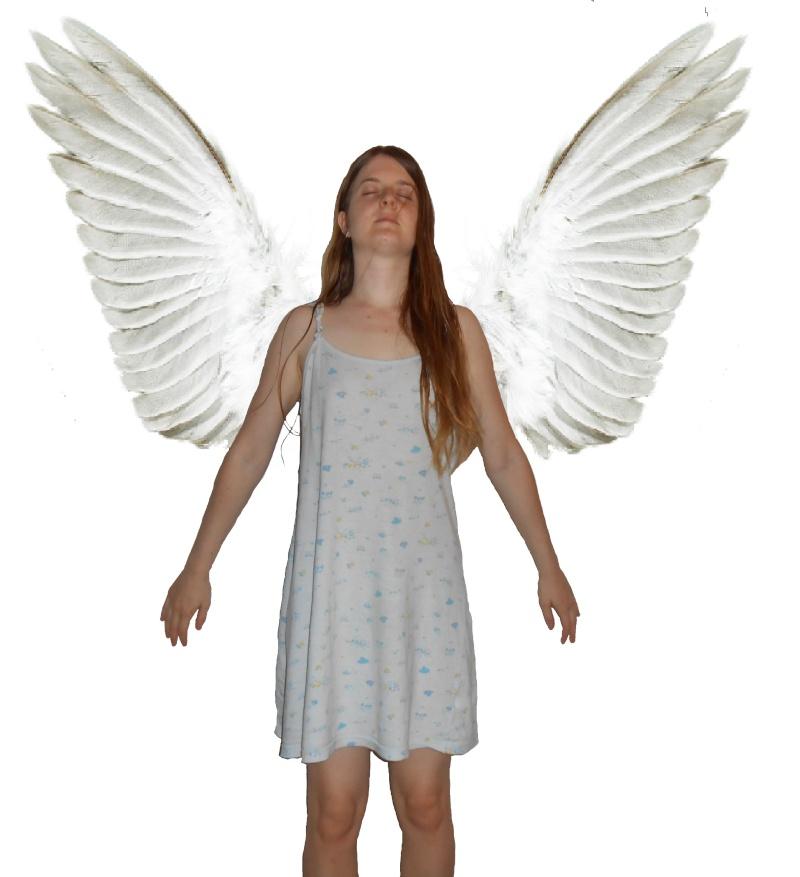 La prairie aux Amandiers Angel11