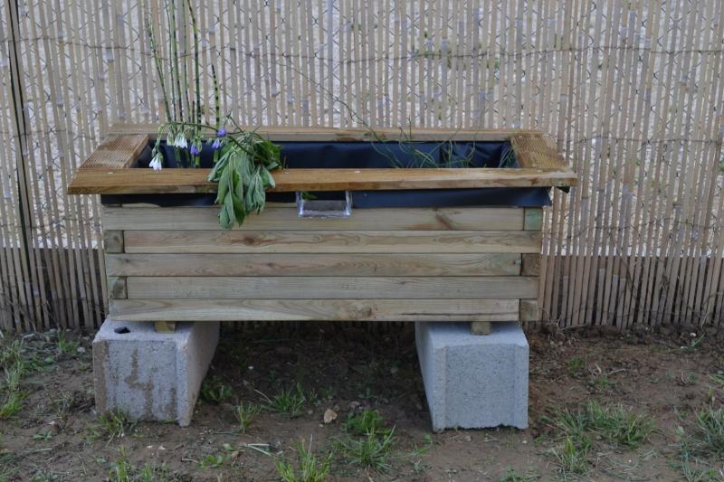 bassin de jardin hors sol Dsc_0412