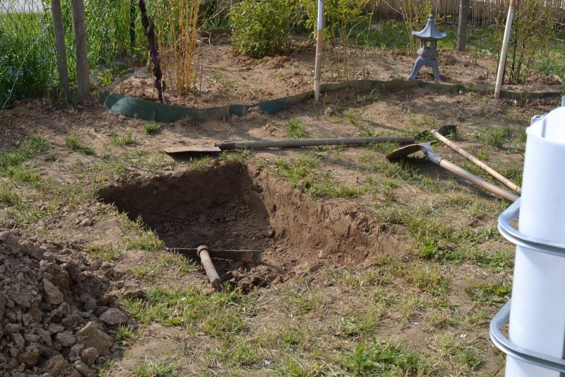 bassin de jardin hors sol Dsc_0415