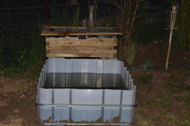 bassin de jardin hors sol Dsc_0418