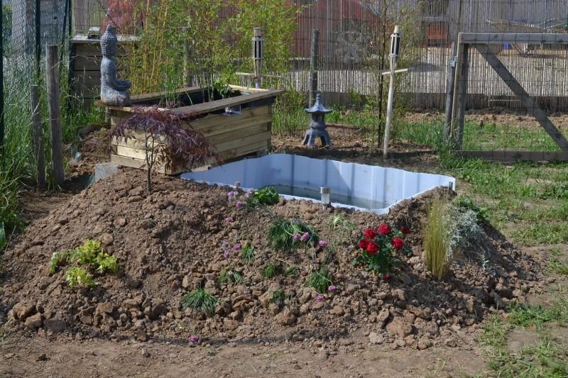 bassin de jardin hors sol Dsc_0421