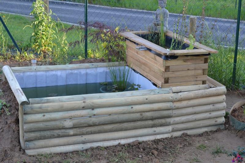 bassin de jardin hors sol Dsc_0422