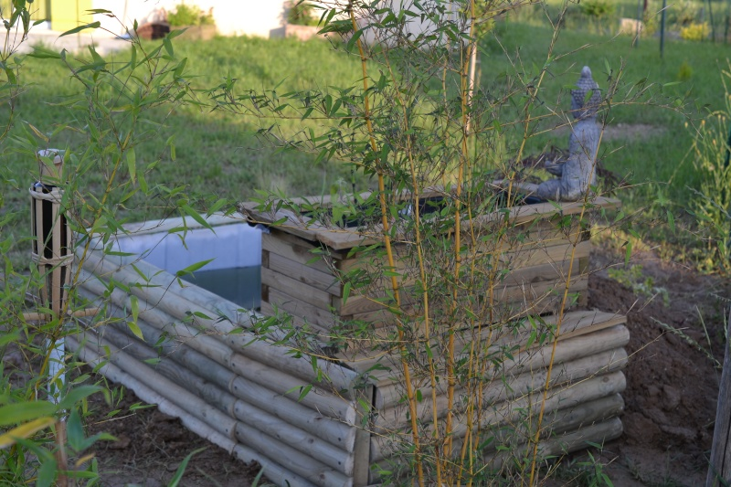 bassin de jardin hors sol Dsc_0423