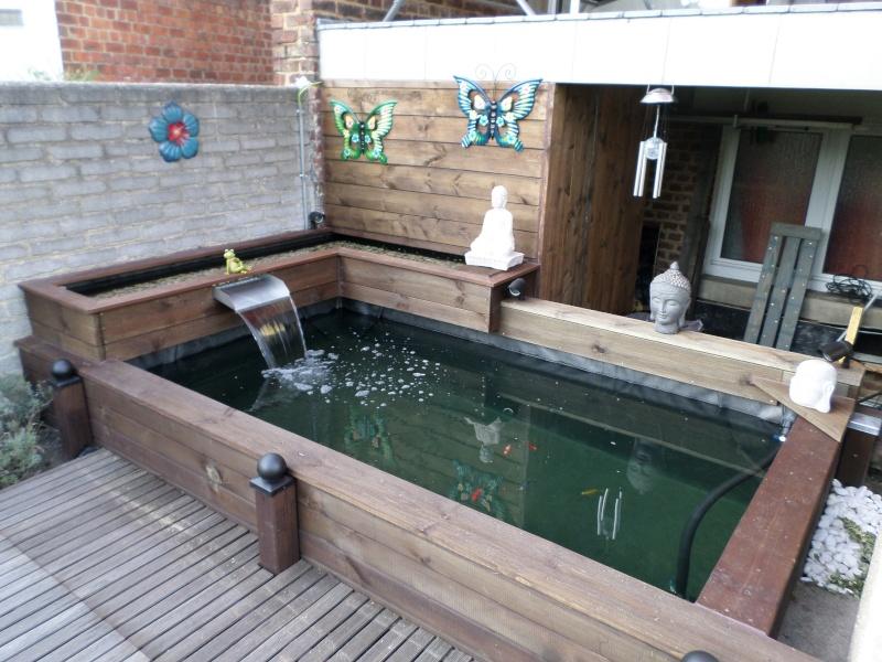 bassin semi hors sol Sam_0010