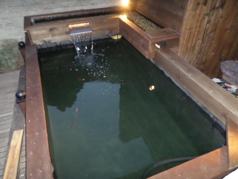 bassin semi hors sol Sam_0011