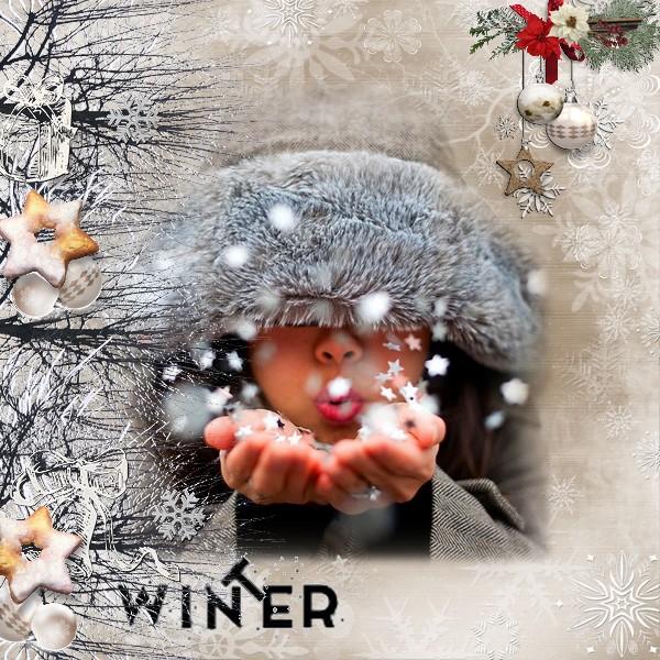 Case n°11 Winter10