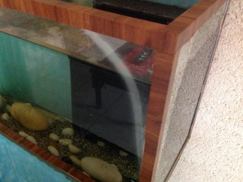 Verre aquariums qui devient blanc Image12