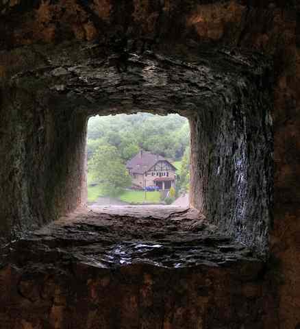 41 - Le jardin vu d'une fenêtre... photos reçues - Page 2 12061610
