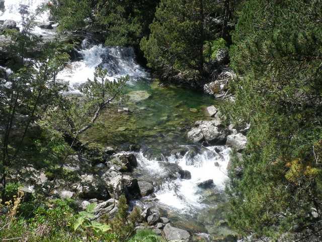 40 - Les cours d'eau... photos reçues - Page 3 Gave_d10