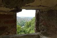 41 - Le jardin vu d'une fenêtre... photos reçues - Page 2 Image_10